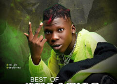 Mixtape: Vdj Jio – Best Of Seyi Vibez