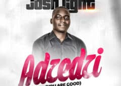 Music: Josh Light – Adzedzi [You Are Good]