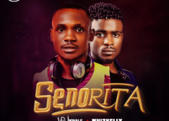Music: VDJ Royale Ft. Whizkelly – Senorita